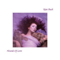 Cover of the album 'Hounds Of Love'