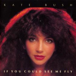 'If You Could See Me Fly' - CD cover