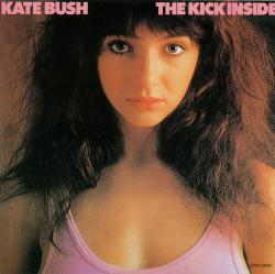 'The Kick Inside' - Japanese album cover